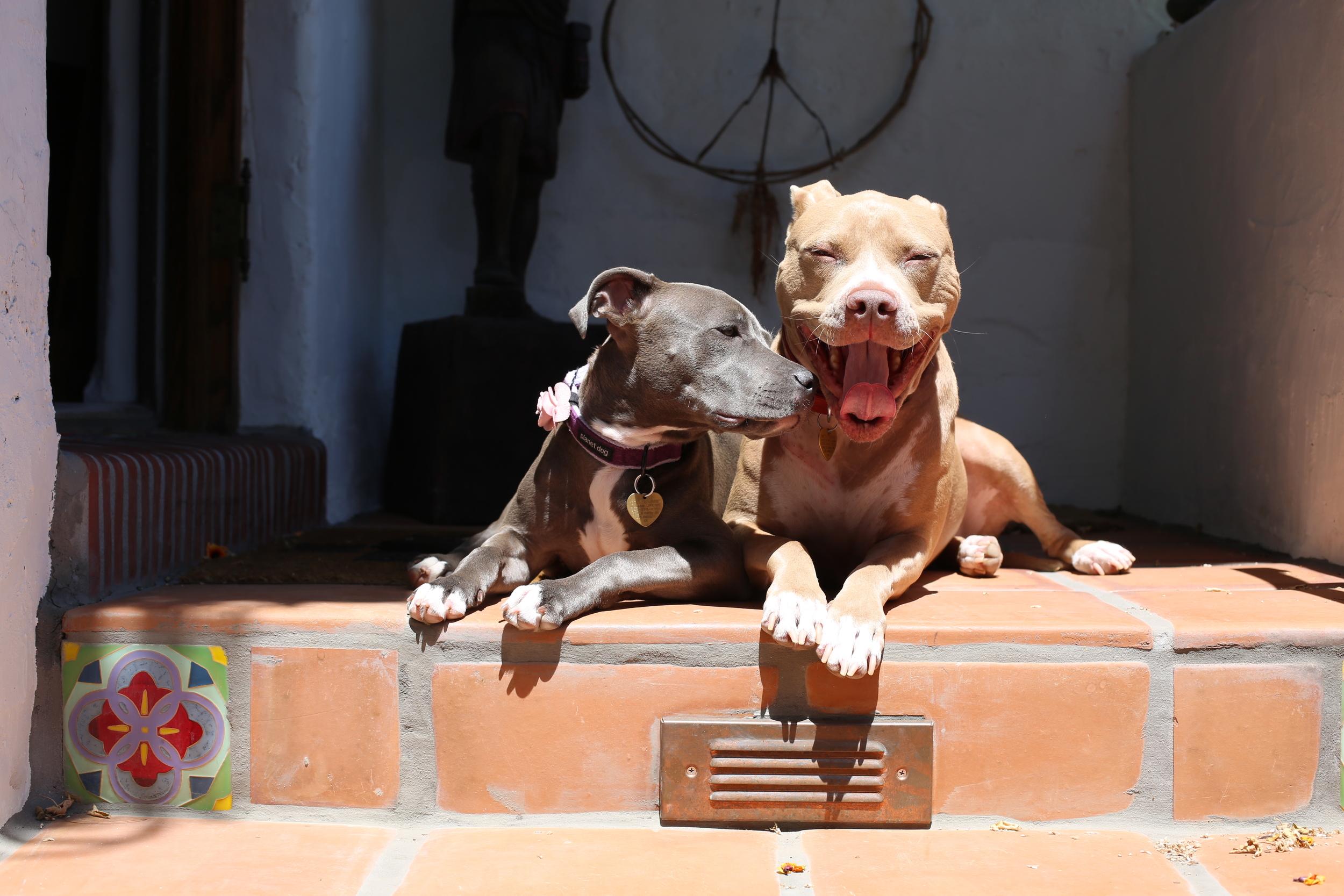 Stella and Betty!