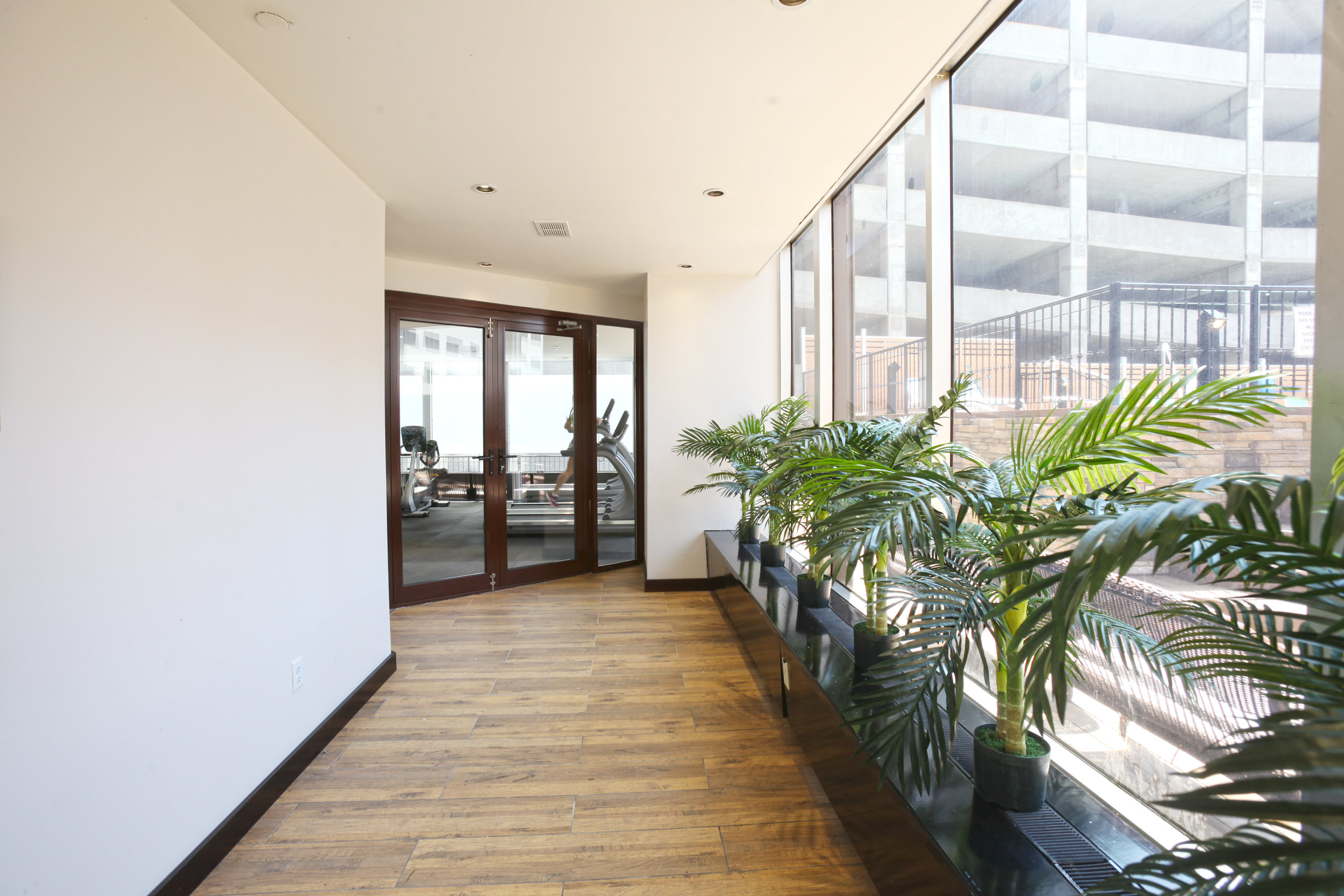 Gallery 720 — Luxury Apartments for Rent in St  Louis