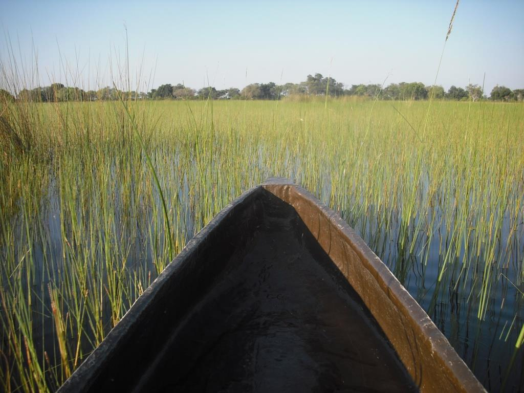 Canoeing in the Okavango Delta – South Africa