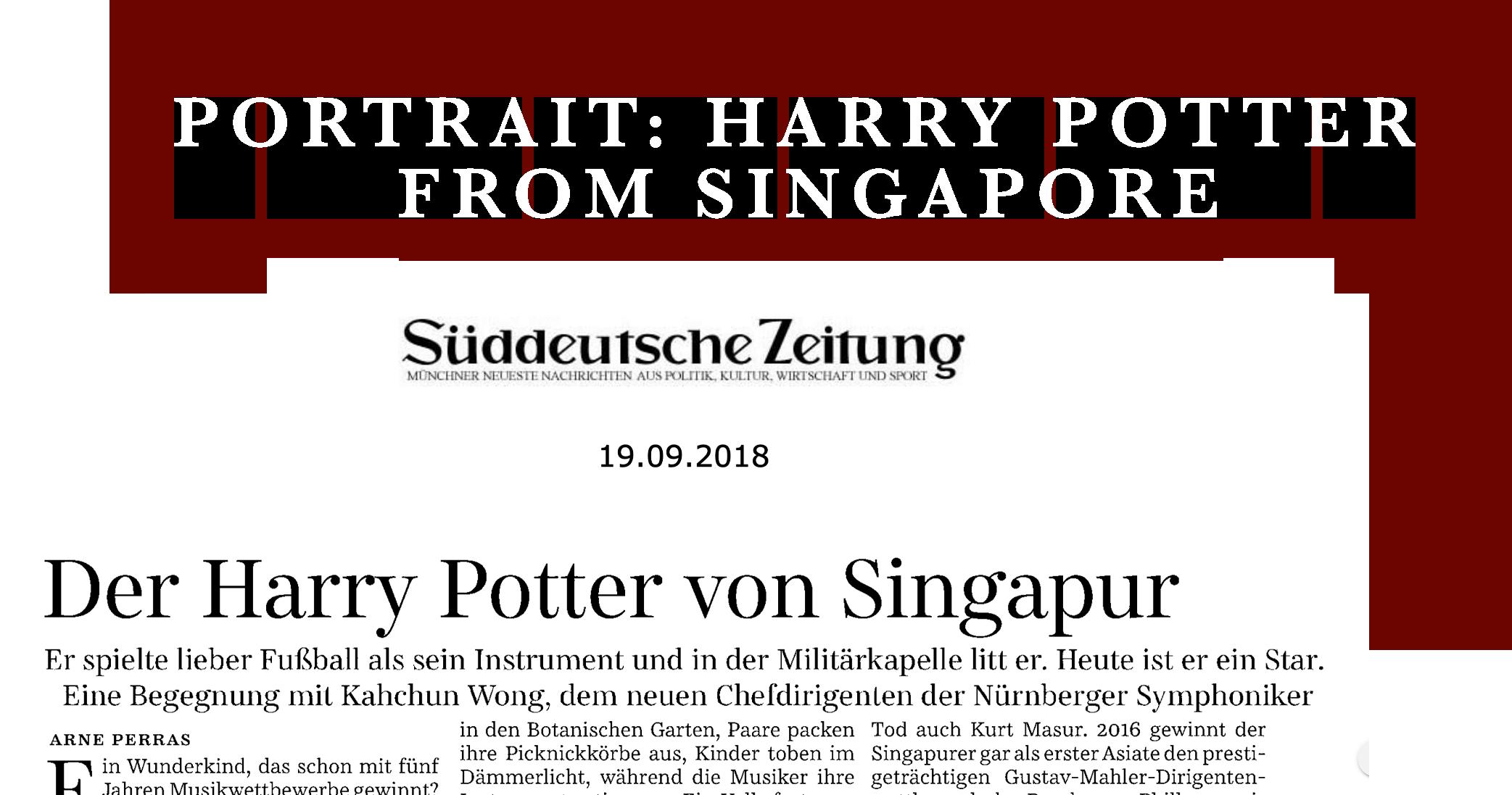 portrait of harry potter.png