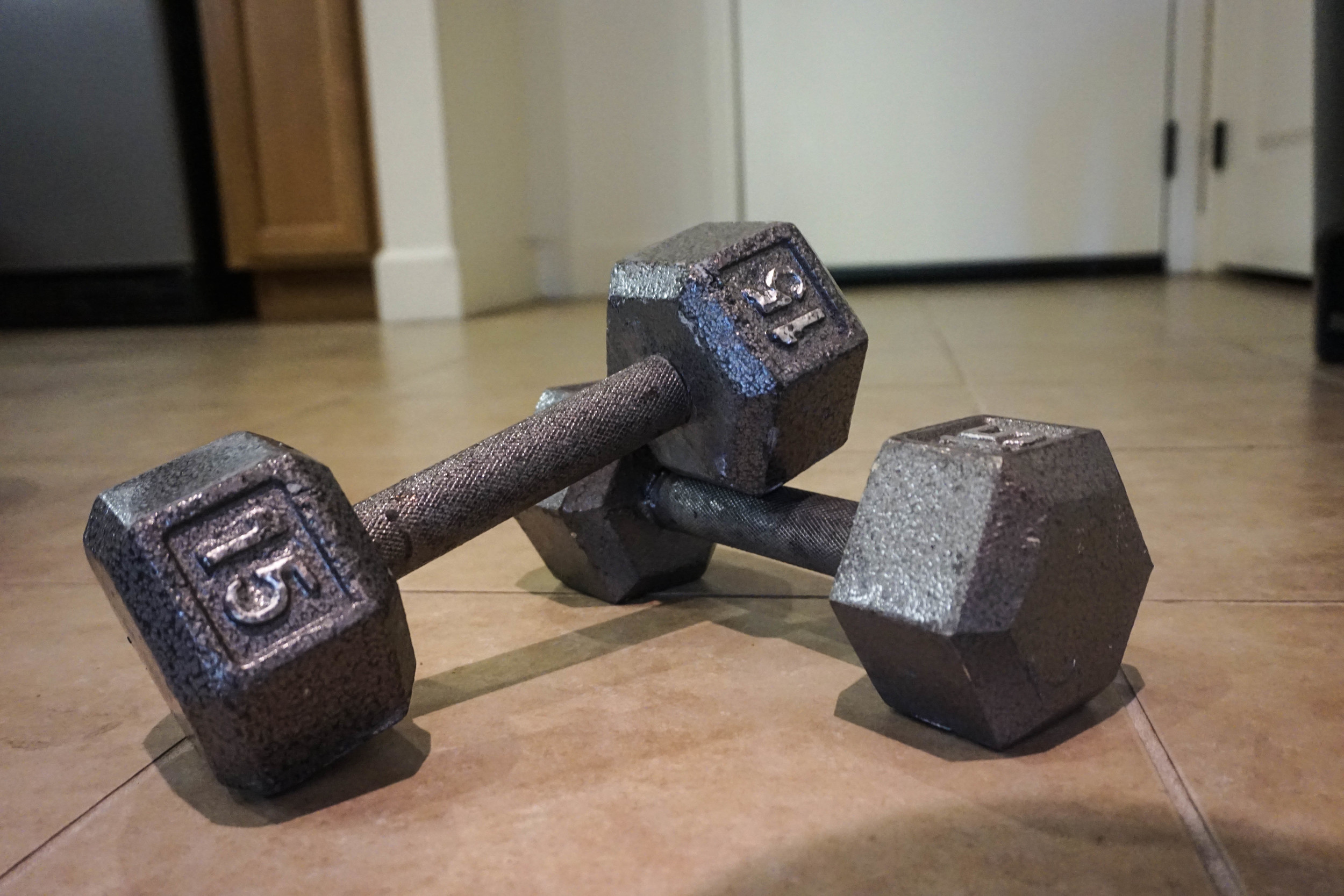 dumbbells for in home workout