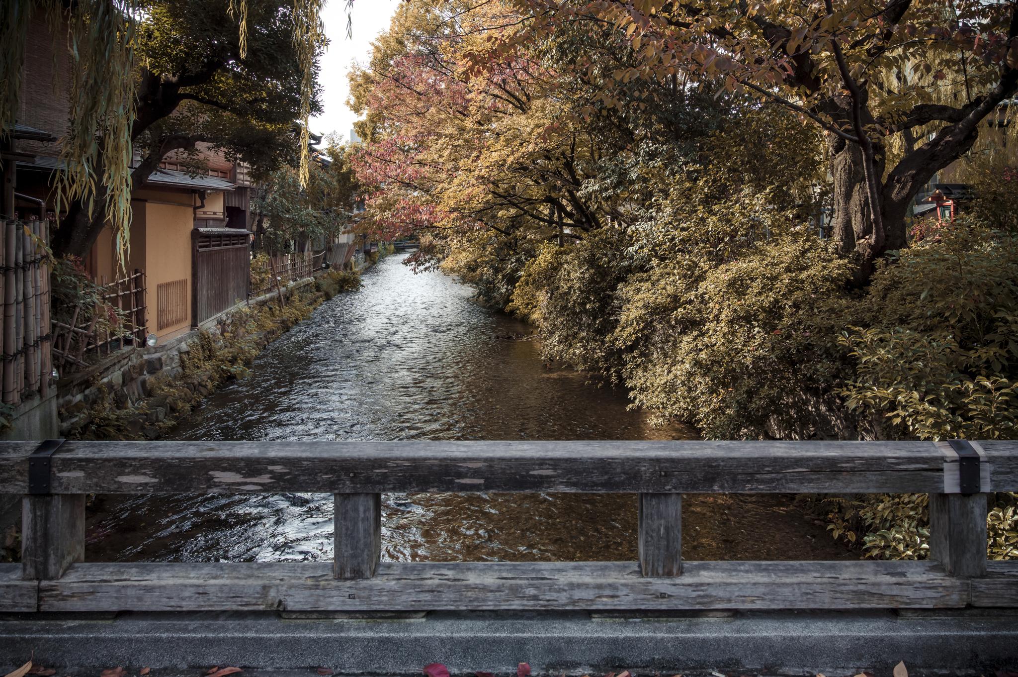 AV Kyoto-13_.jpg
