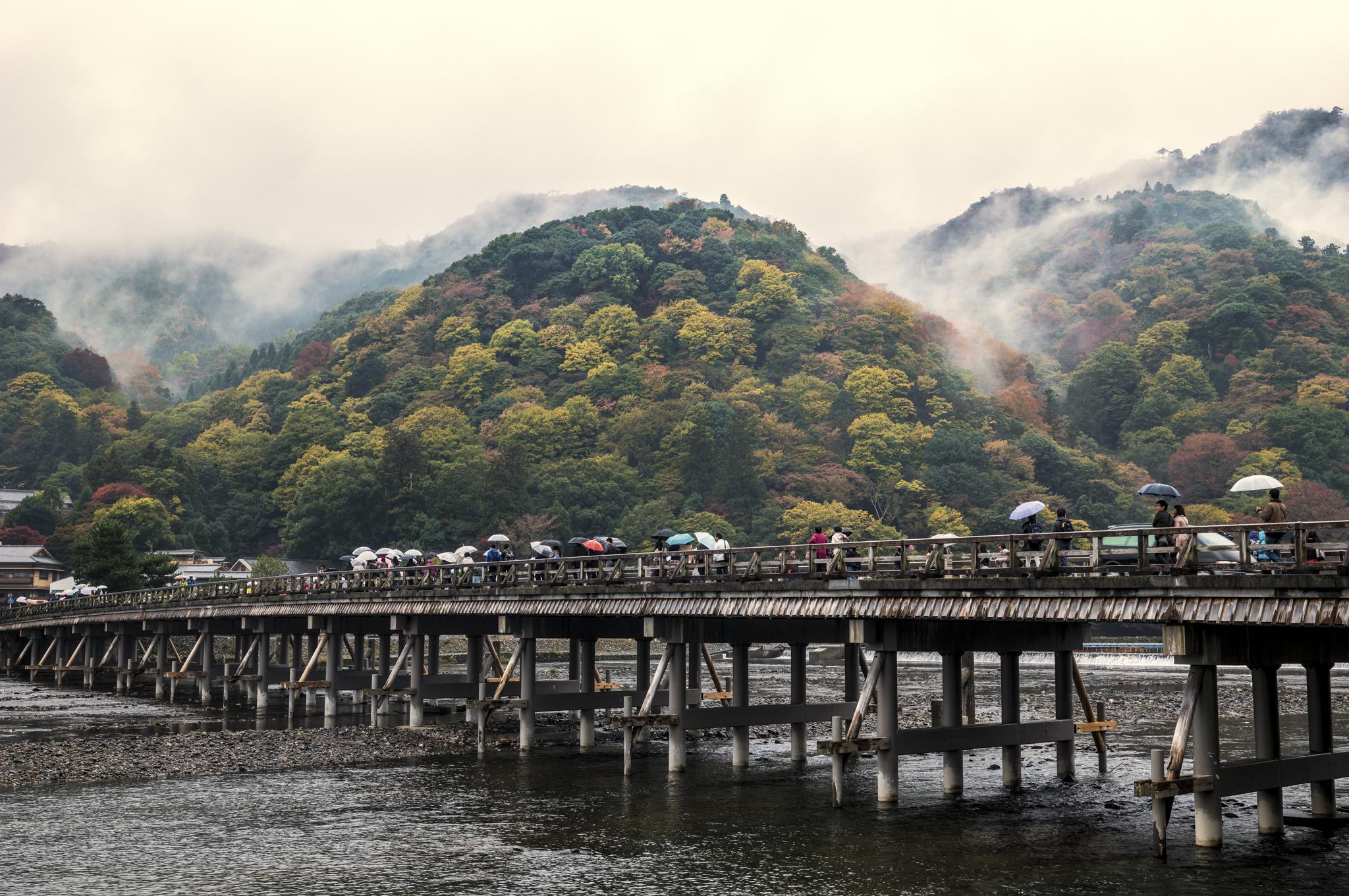 AV Kyoto-2_.jpg