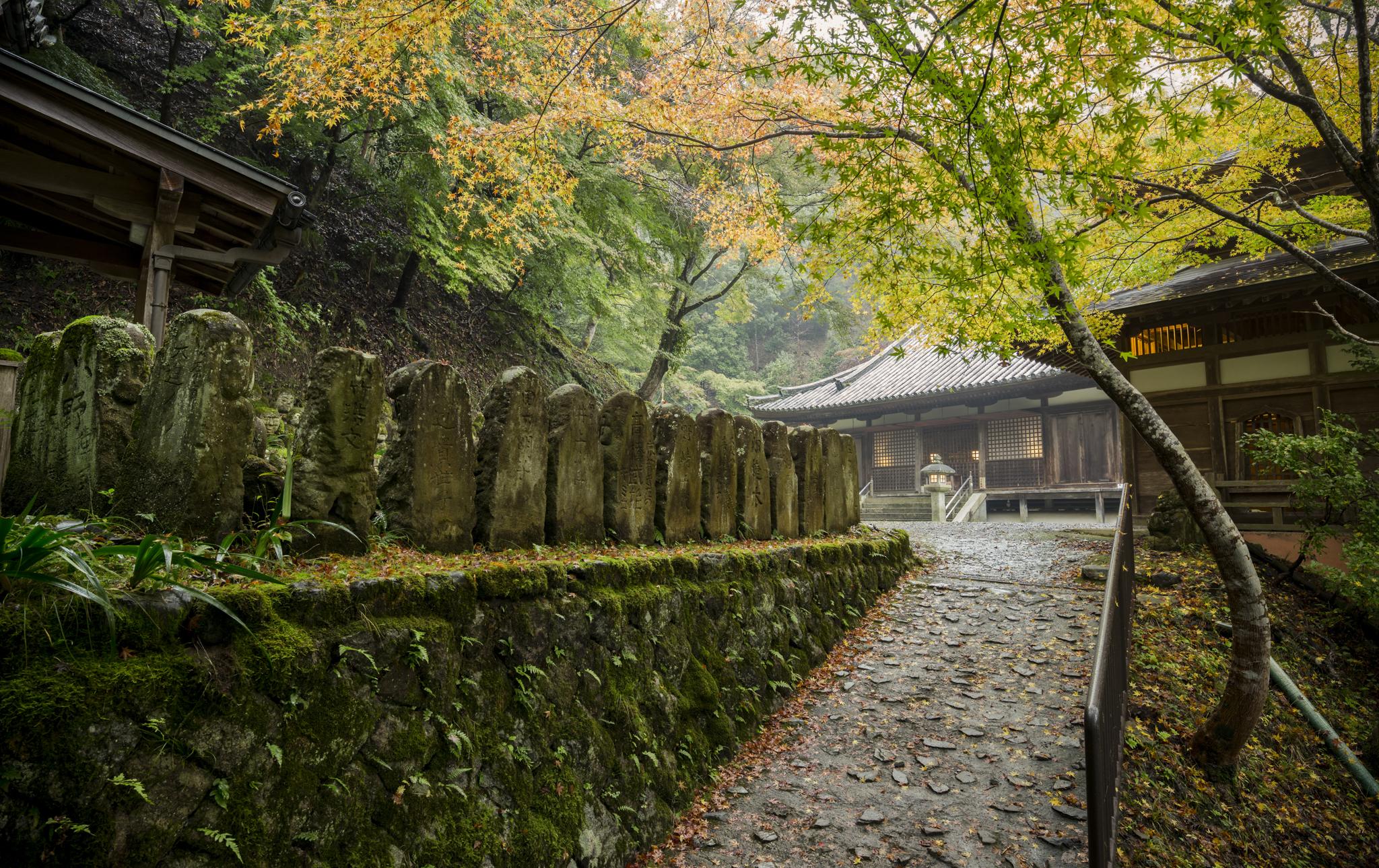 AV Kyoto-9_.jpg