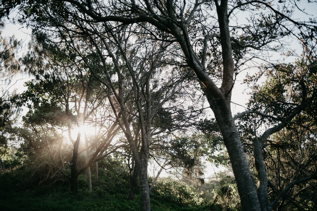 sunshinecoastfamilyphotography-18.JPG