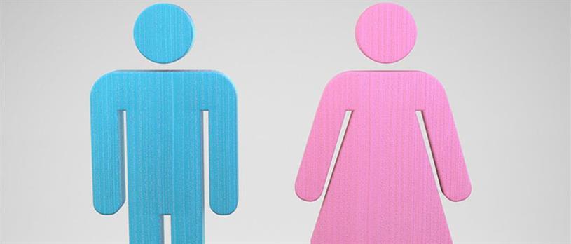 GenderDiversity820-20160801112702162.jpg