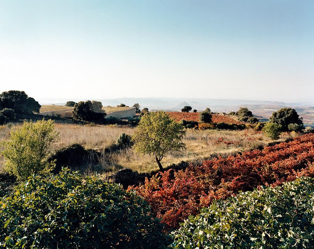 001_Bodega-Lanzaga_Rioja.jpg