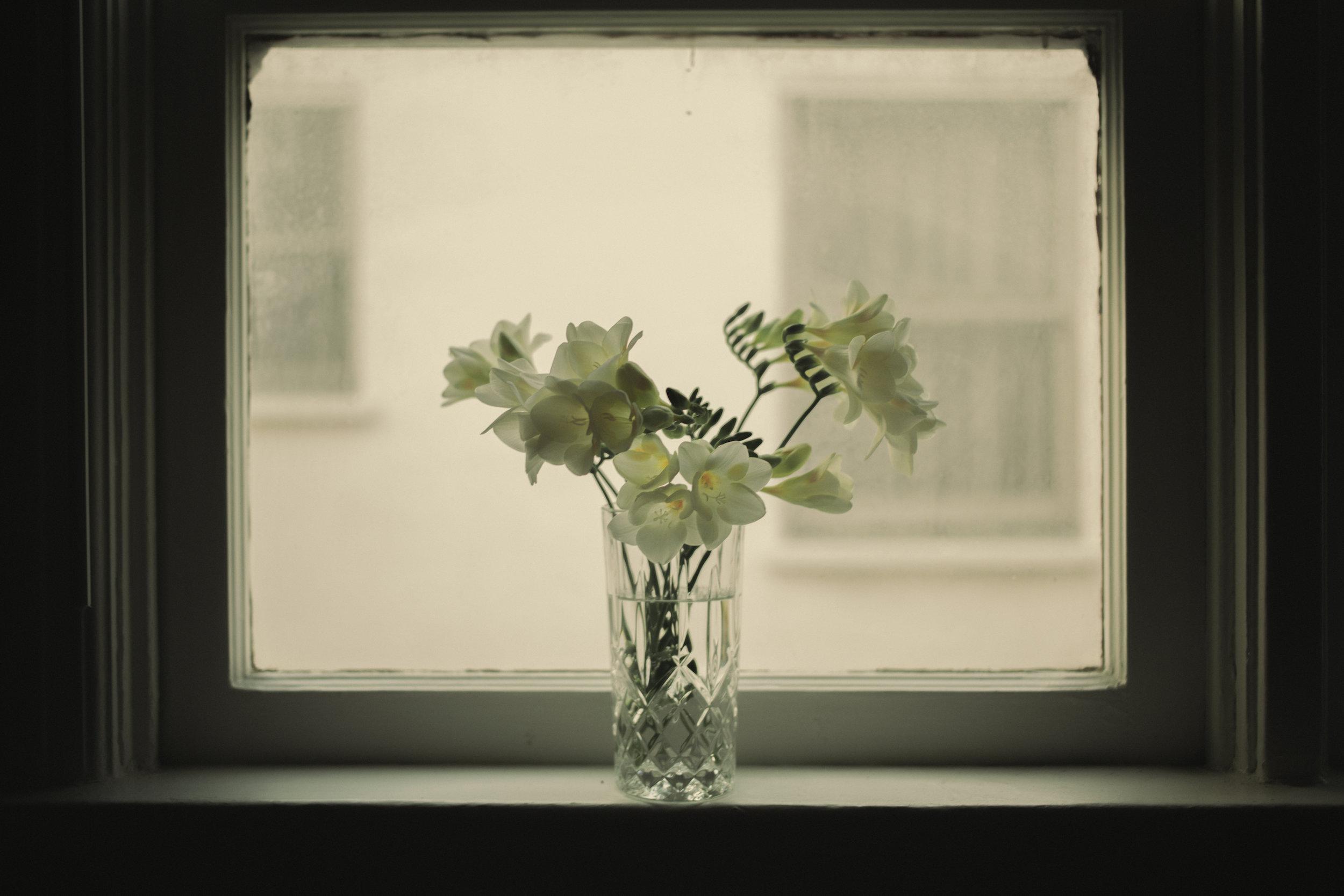 flowers resize.jpg