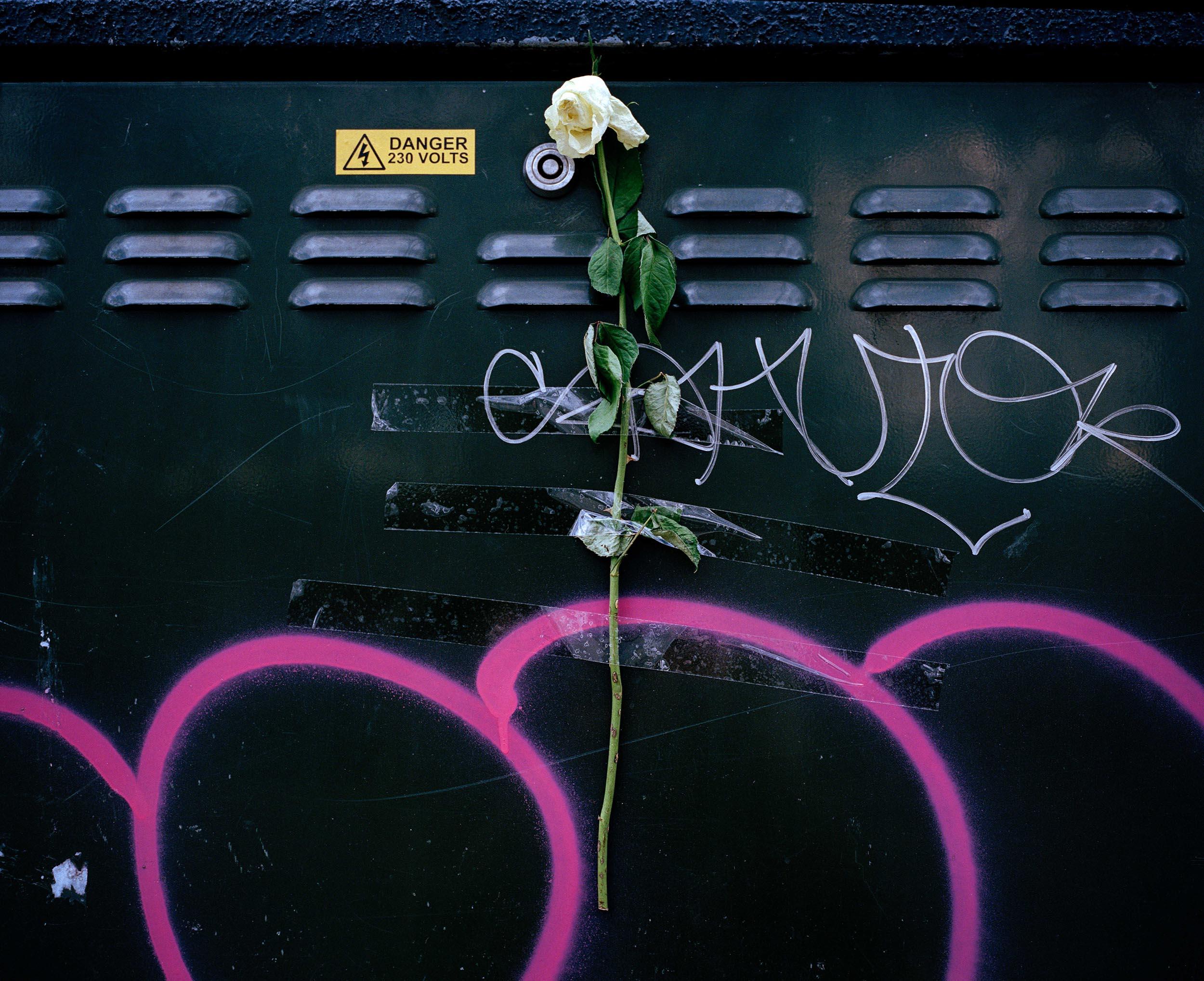 9-blighty-england-london-sam-gregg-photography.jpg