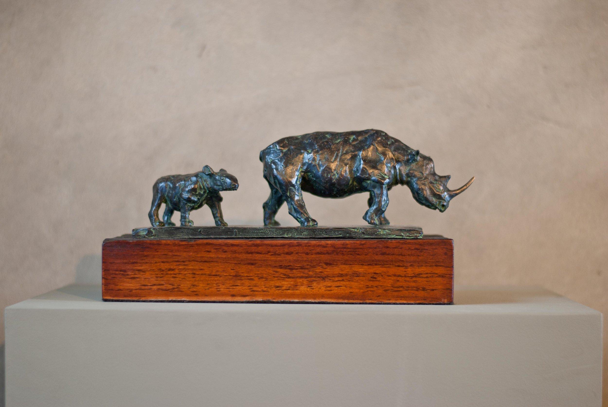 Rhino and Calf R19 000.jpg