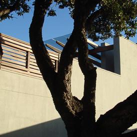 Kaalvoet Huis Banner 03b.jpg