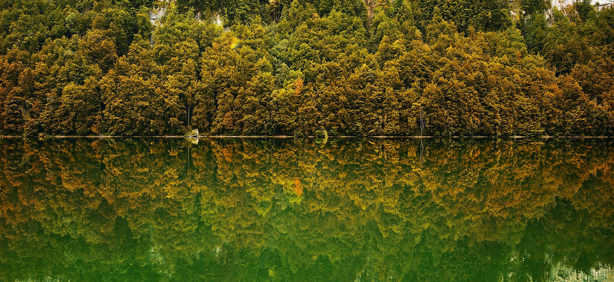 Fall_Reflexion.jpg