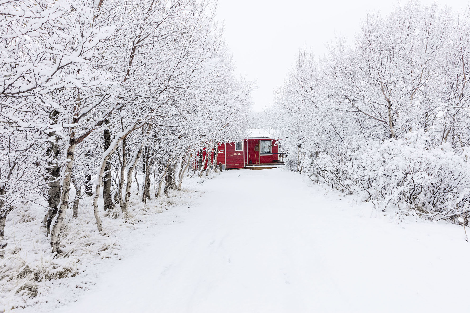 Red_Cottage_snow.jpg