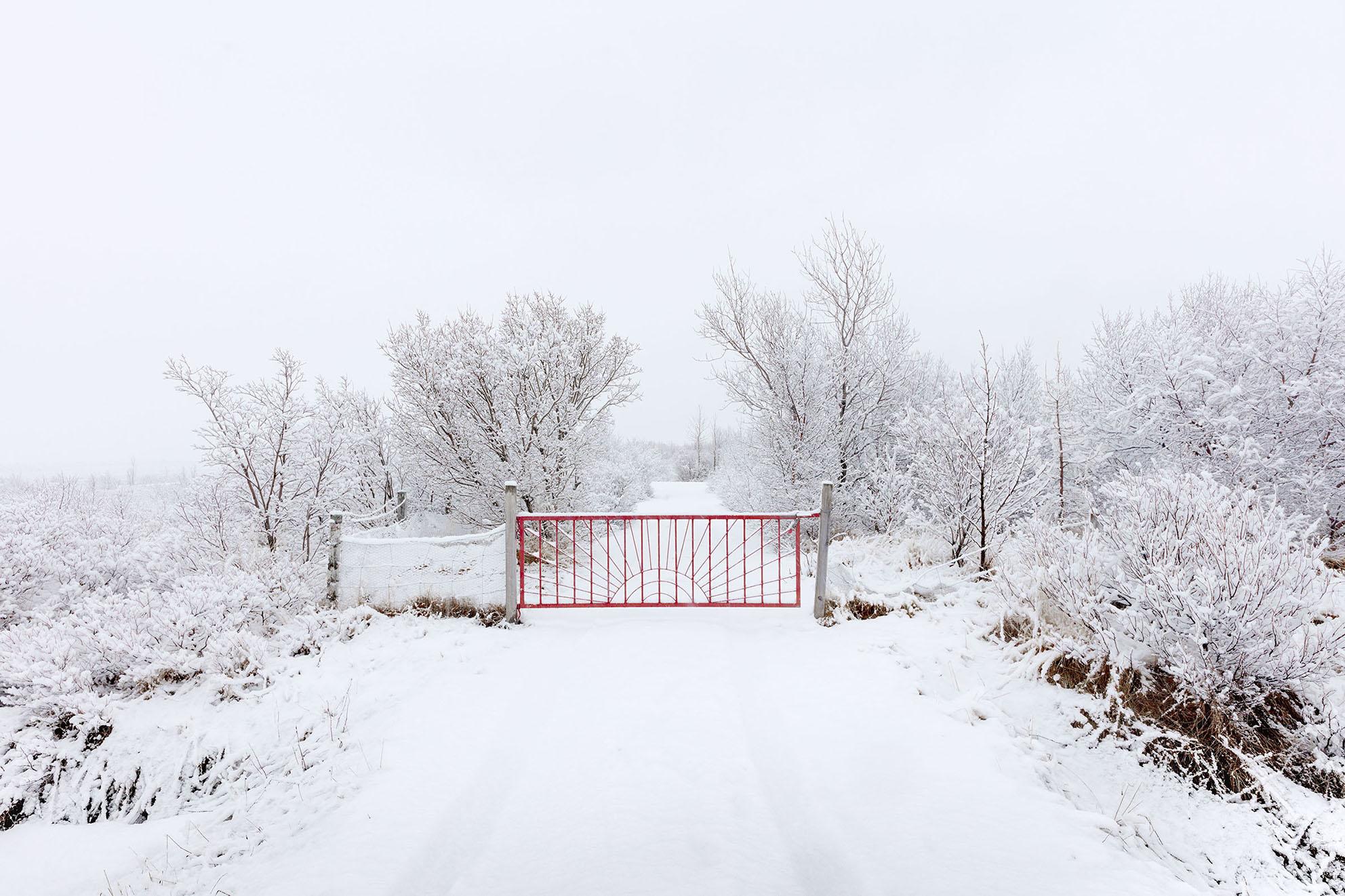 Red_Fence_snow.jpg