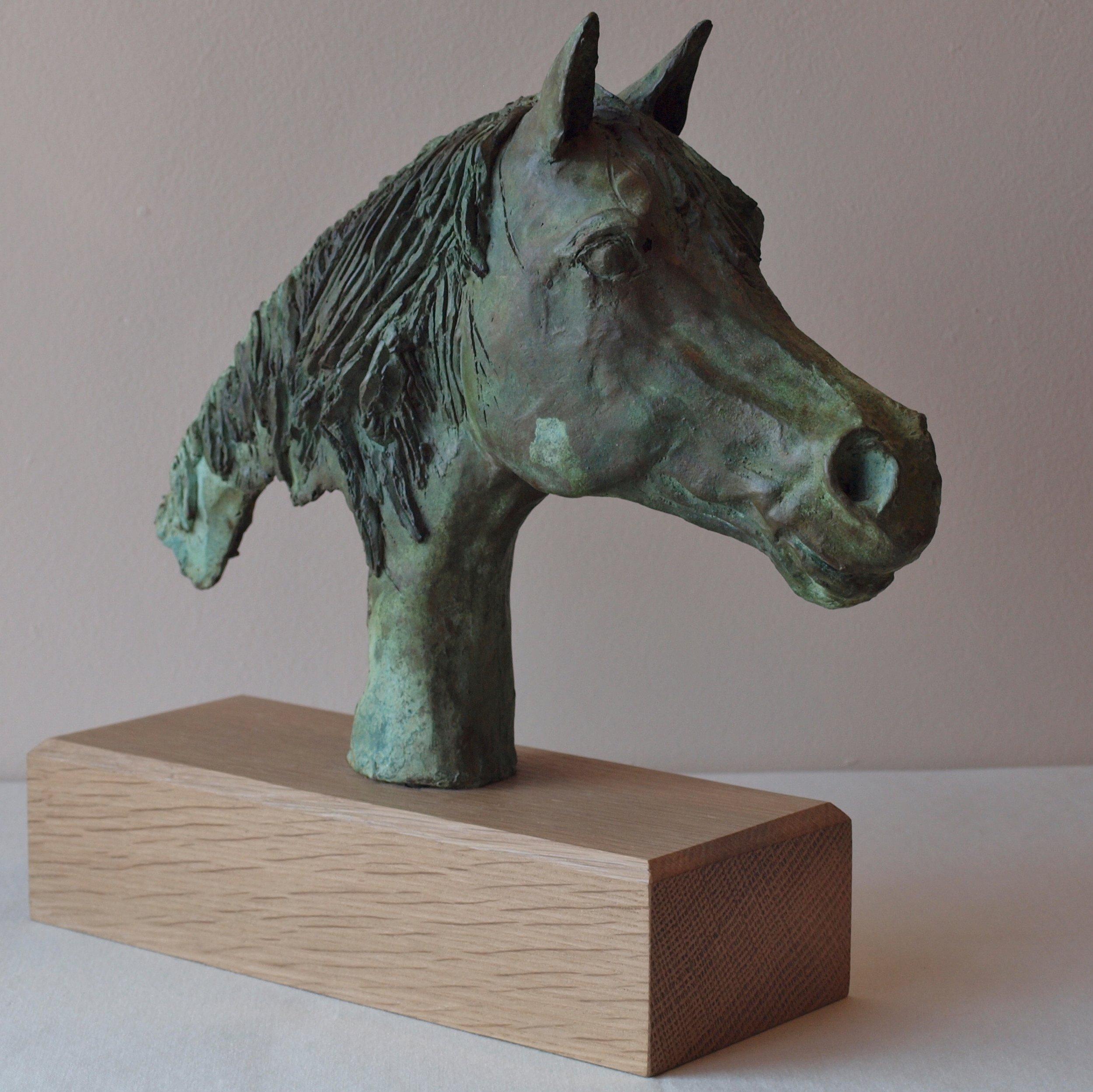 Silvern Surprise - 2019 (cold cast bronze)