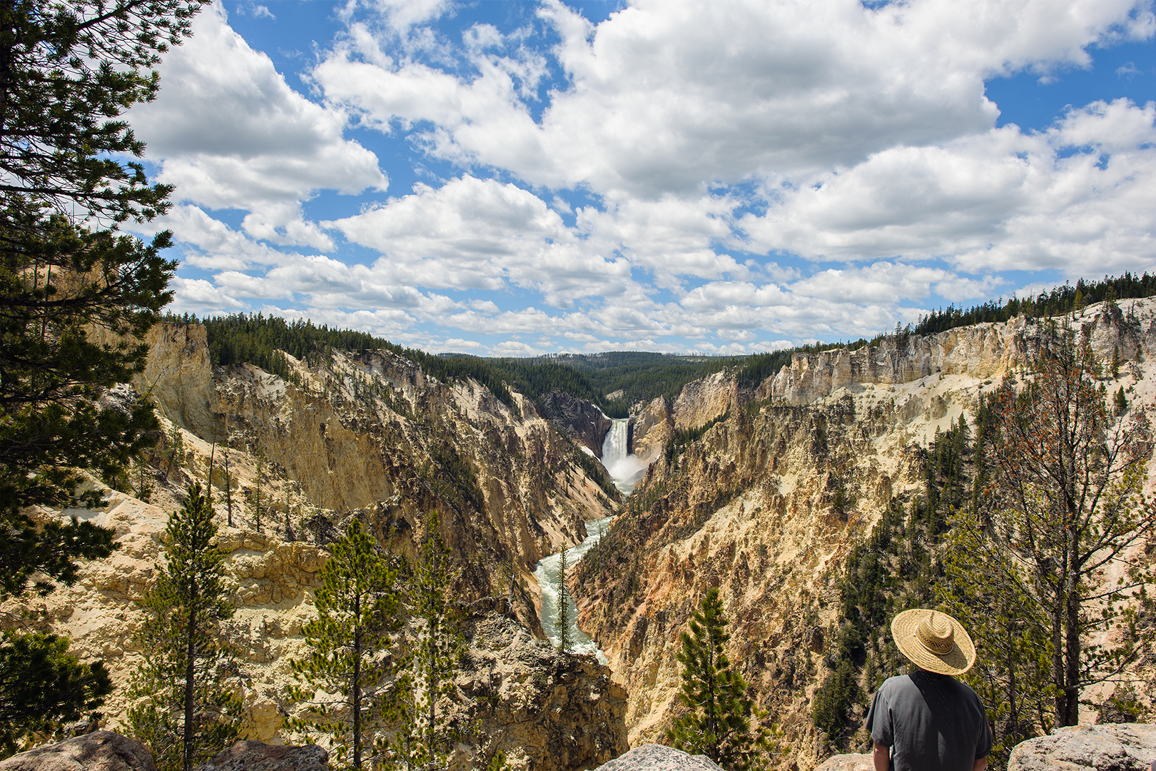 Lower Falls of the Yellowstone River, Artist Point