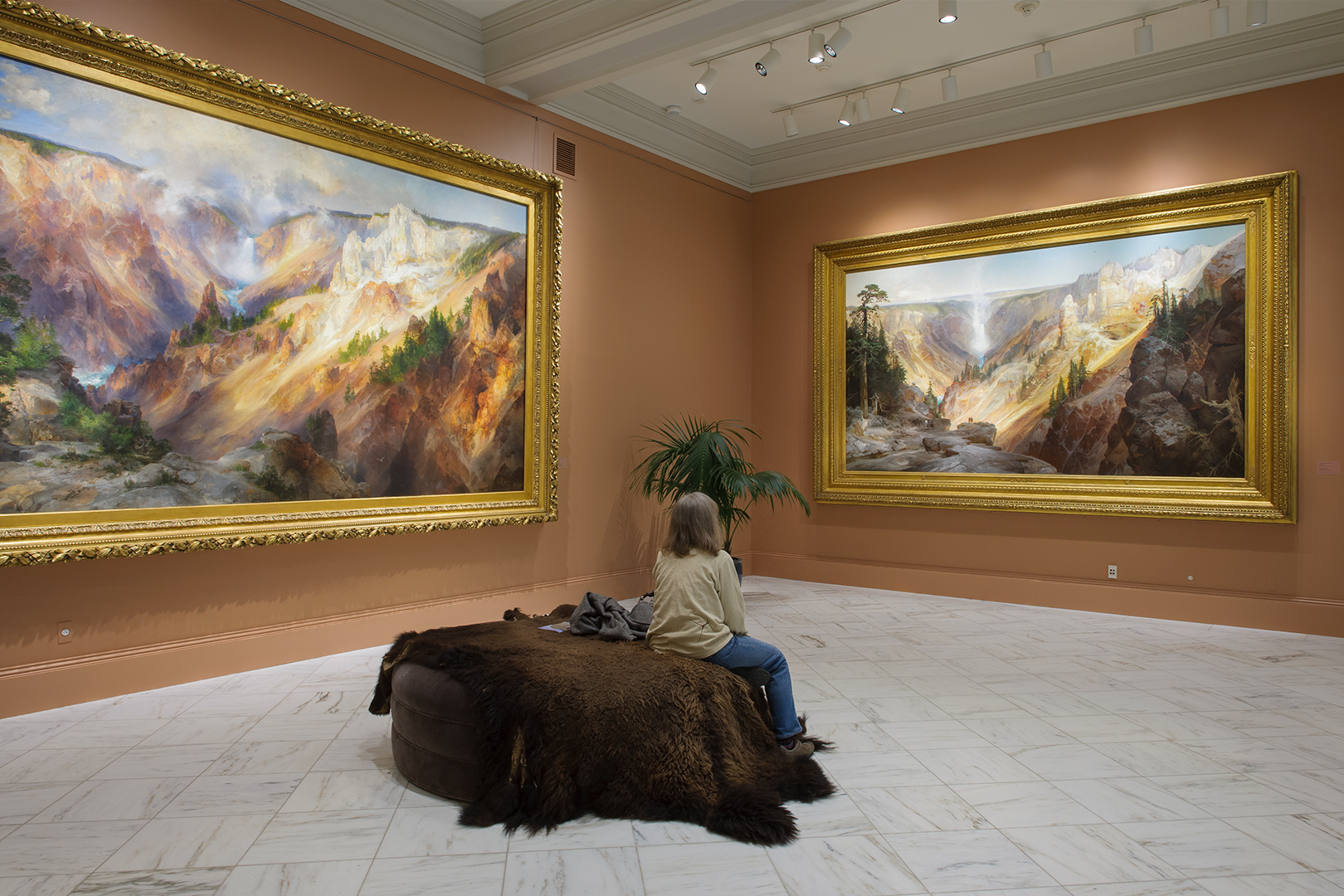 The Grand Canyon of the Yellowstone by Thomas Moran, 1872 & 1893, Smithsonian American Art Museum, Washington, D.C.