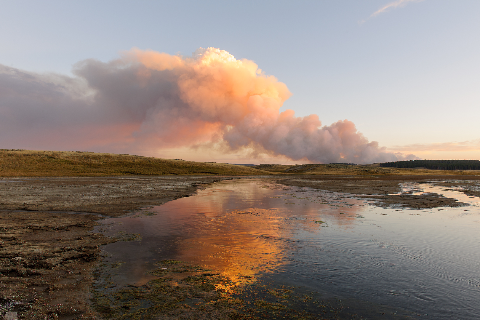 Spruce Fire, Hayden Valley