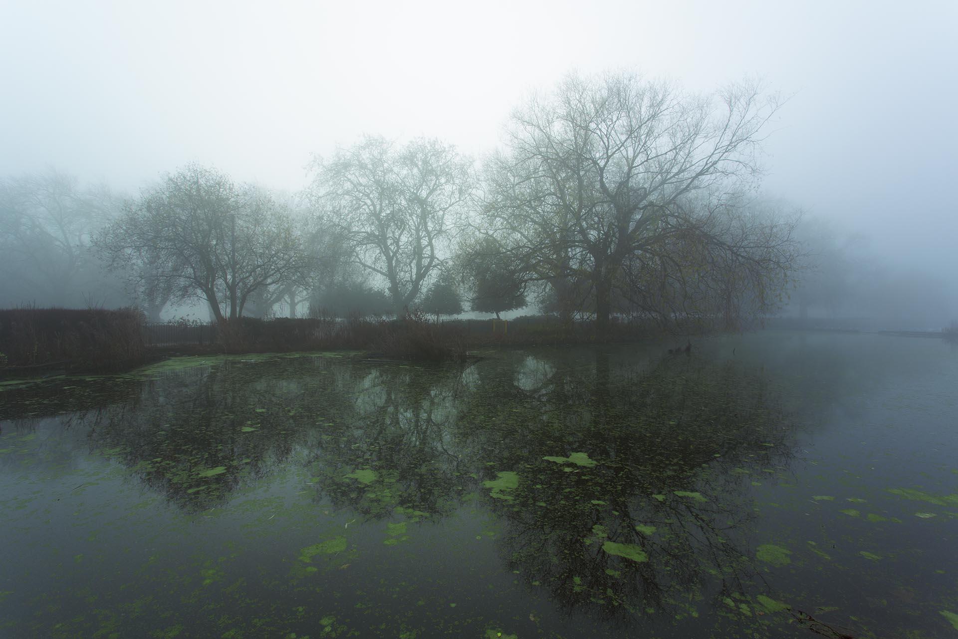 Finsbury Park Lake.jpg