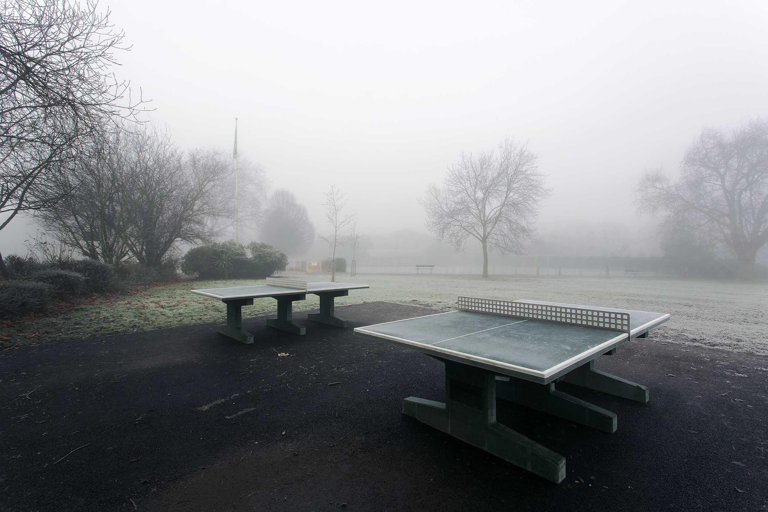 Priory Park in the fog #1.jpg