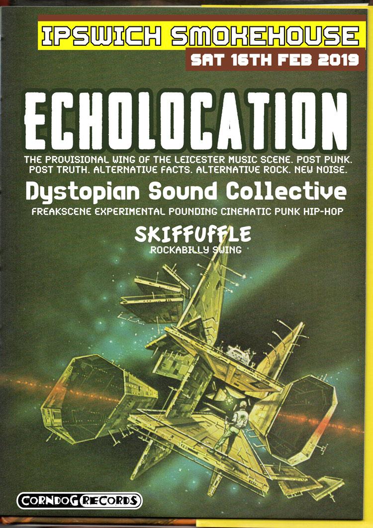 Echolocation.jpg