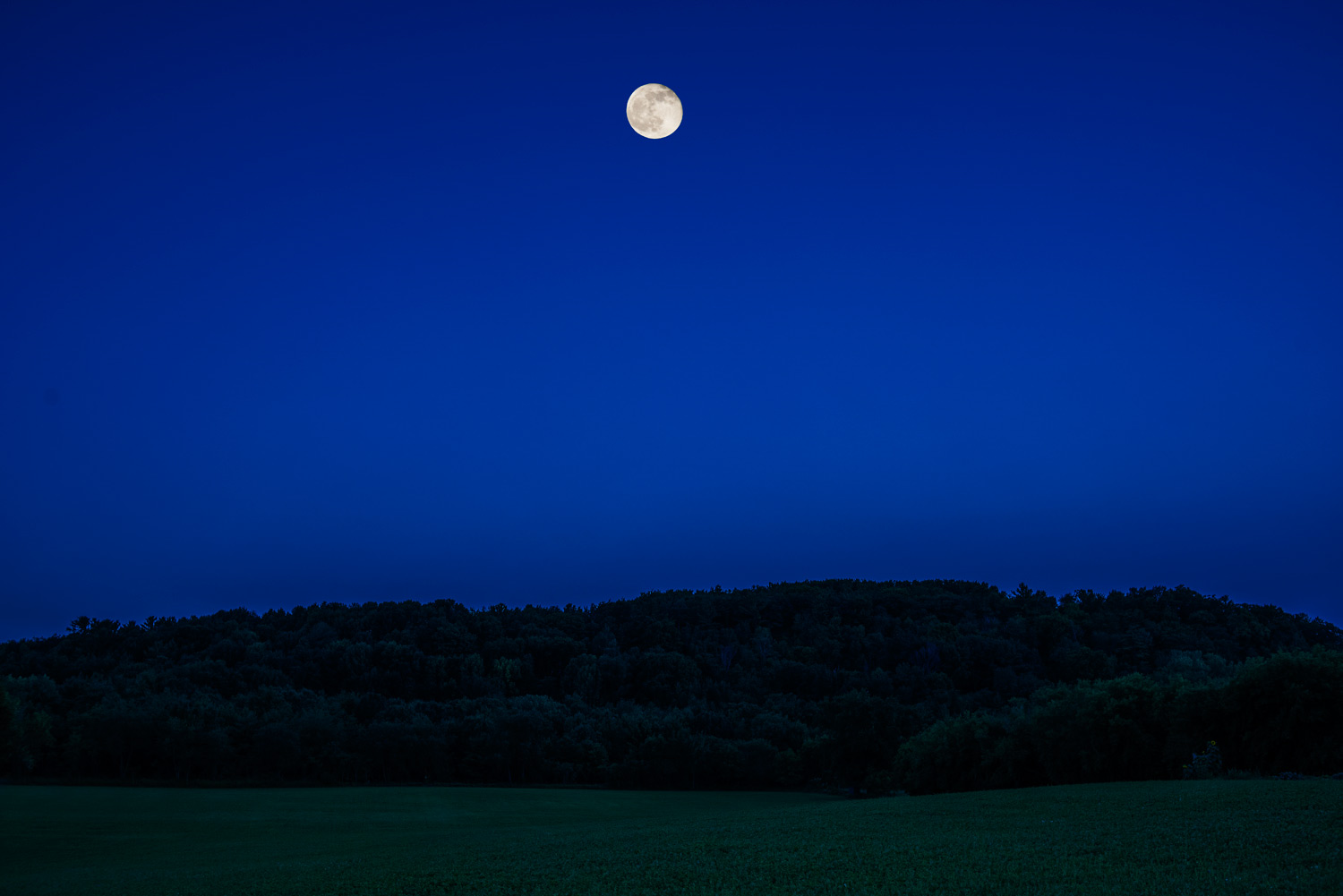Moon Over Mosquito Hill