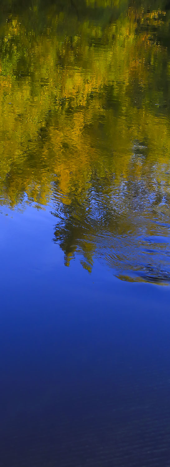 Gold and Cobalt