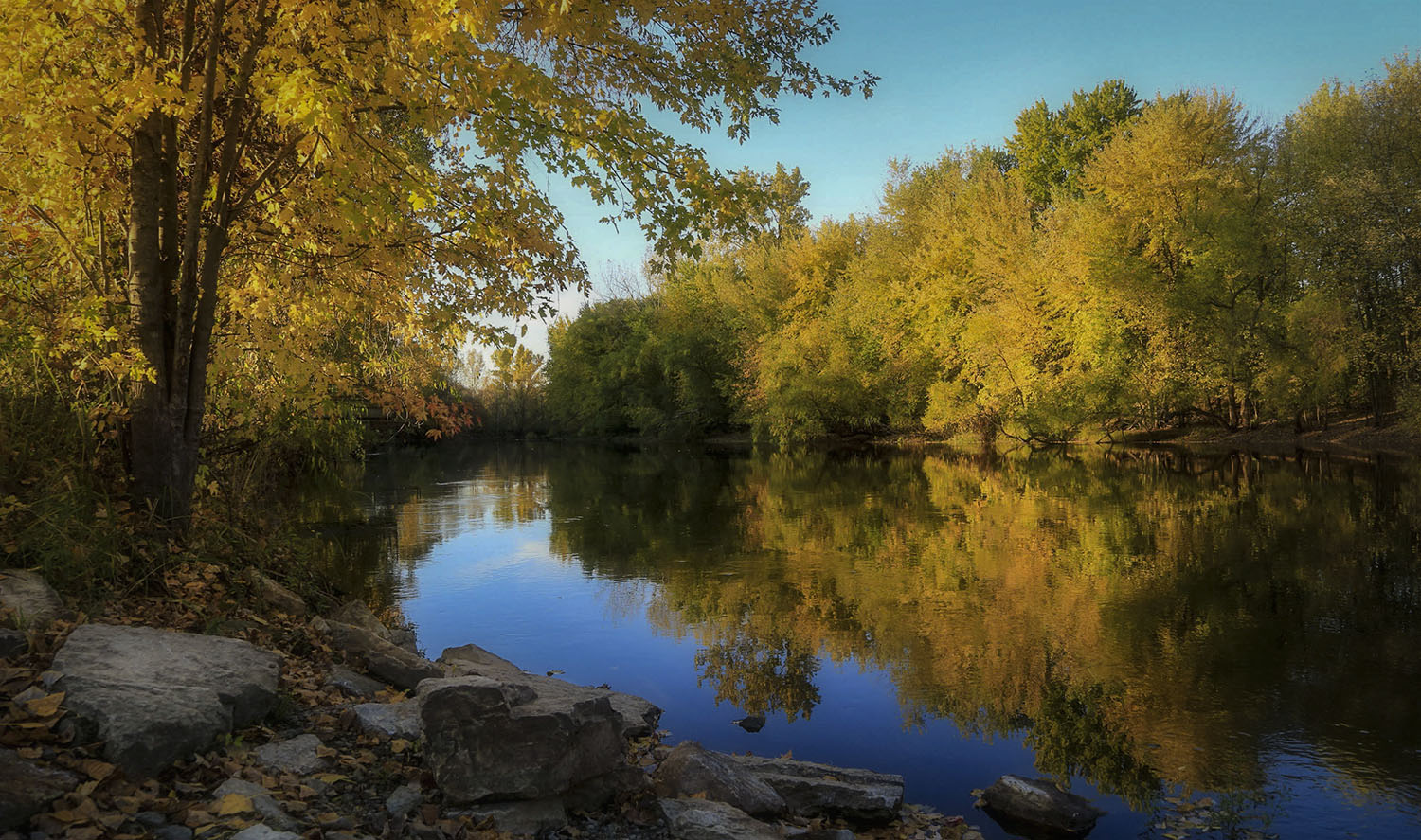 Wolf River Reflections