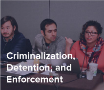 NIIC-website-criminal.jpg