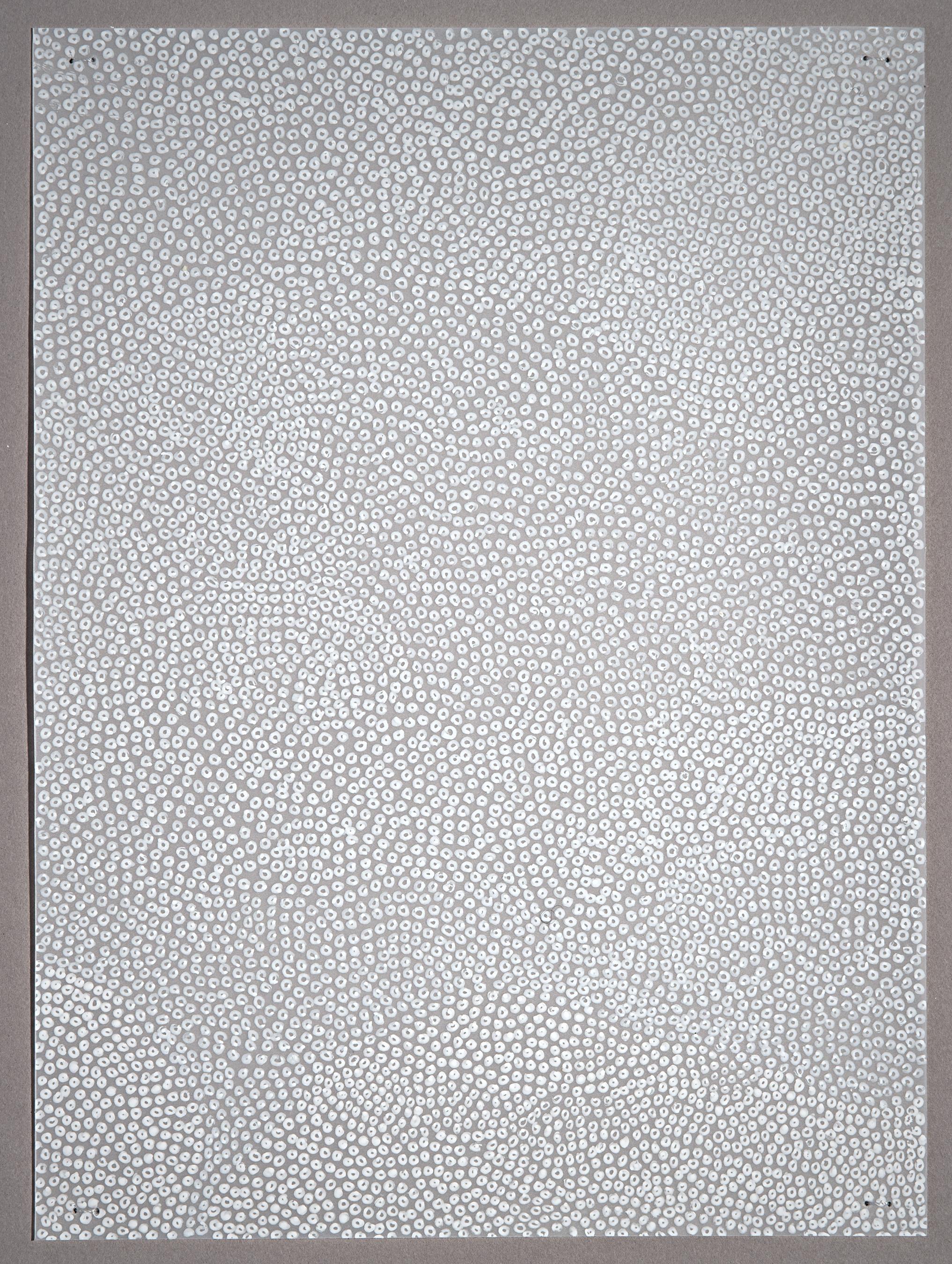 Dot.Field.sm.jpg