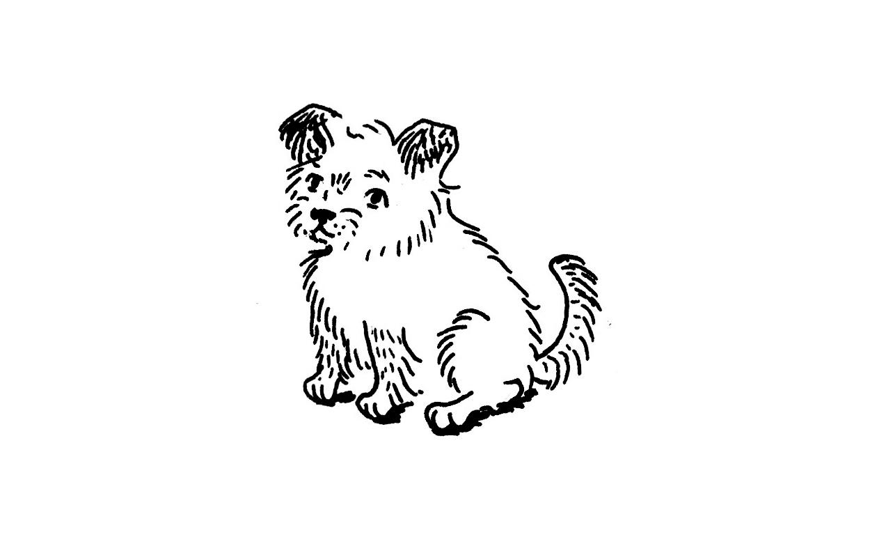 Ch 13 little dog.jpg
