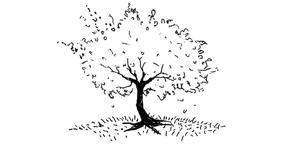 cherry tree final.jpg