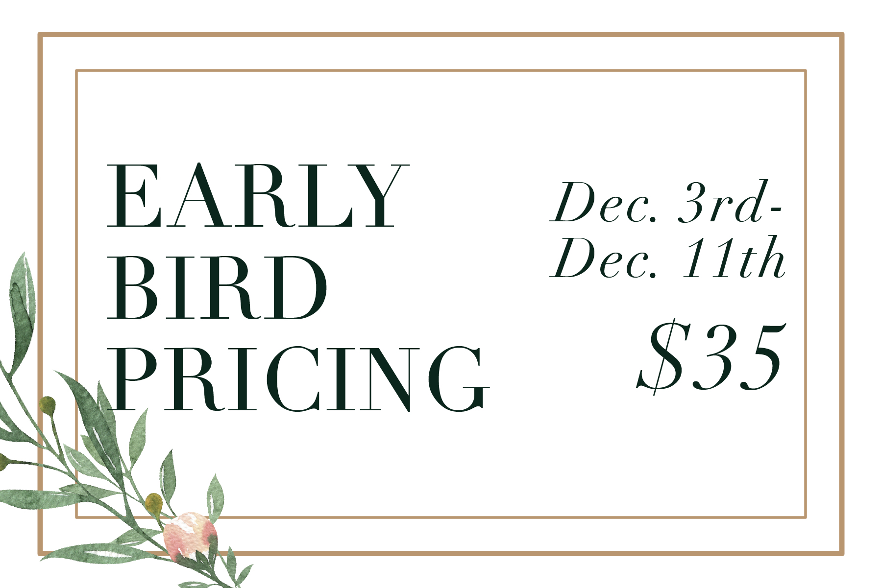 Early Bird Pricing.jpg
