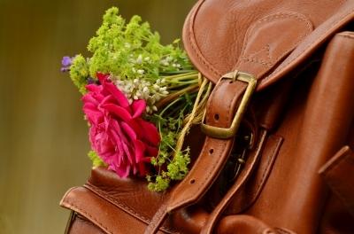 backpack-1482611_960_720.jpg
