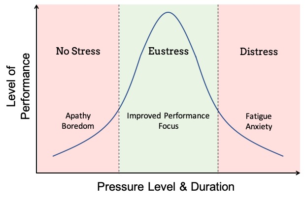 https://www.thoughtfulleader.com/work-pressure-will-help-your-team-thrive/