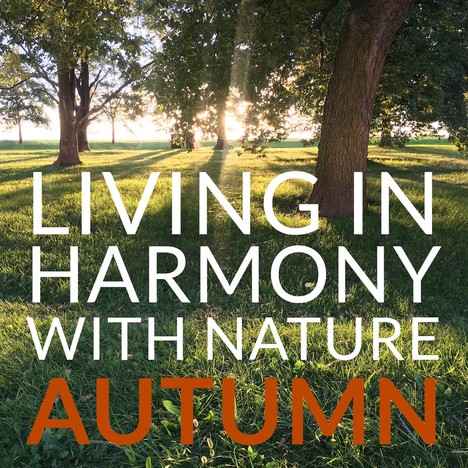 james-LHN-autumnIG.jpg