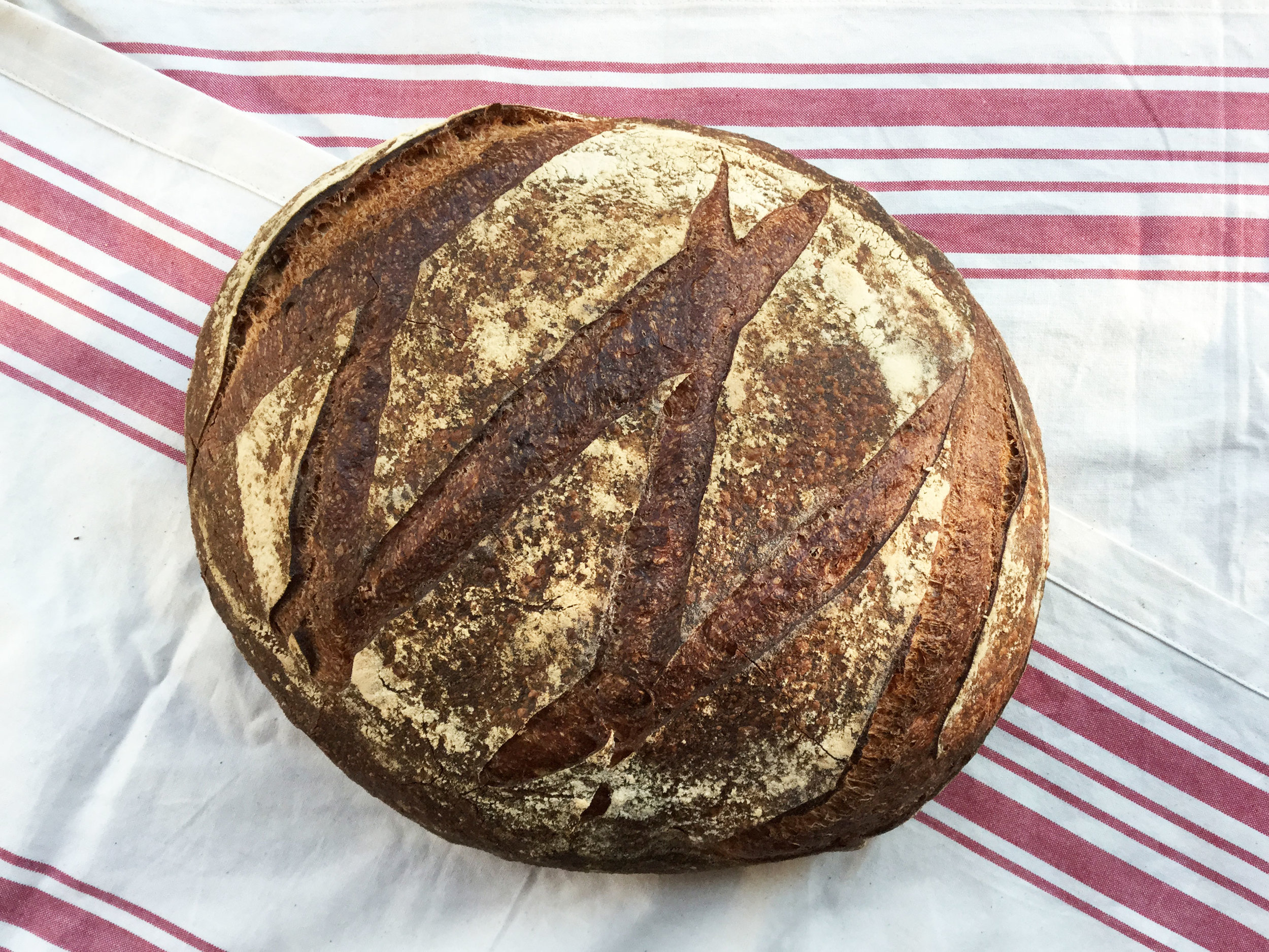 MICHE   A French country round - enough bread to satisfy your family for a week.      Ingredients: Unbleached white flour, organic whole-wheat flour, organic rye flour, sourdough starter, sea salt, water.