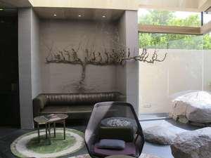 Pinotage vine, Ellerman House