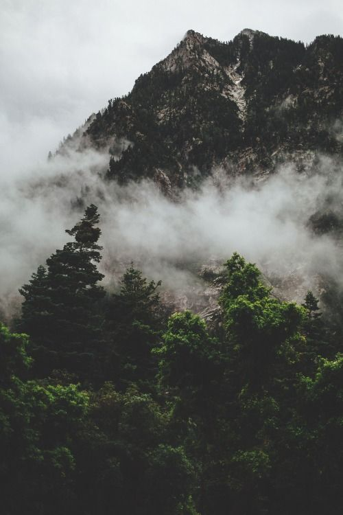 Little Cottonwood Canyon - Kyle Sipple