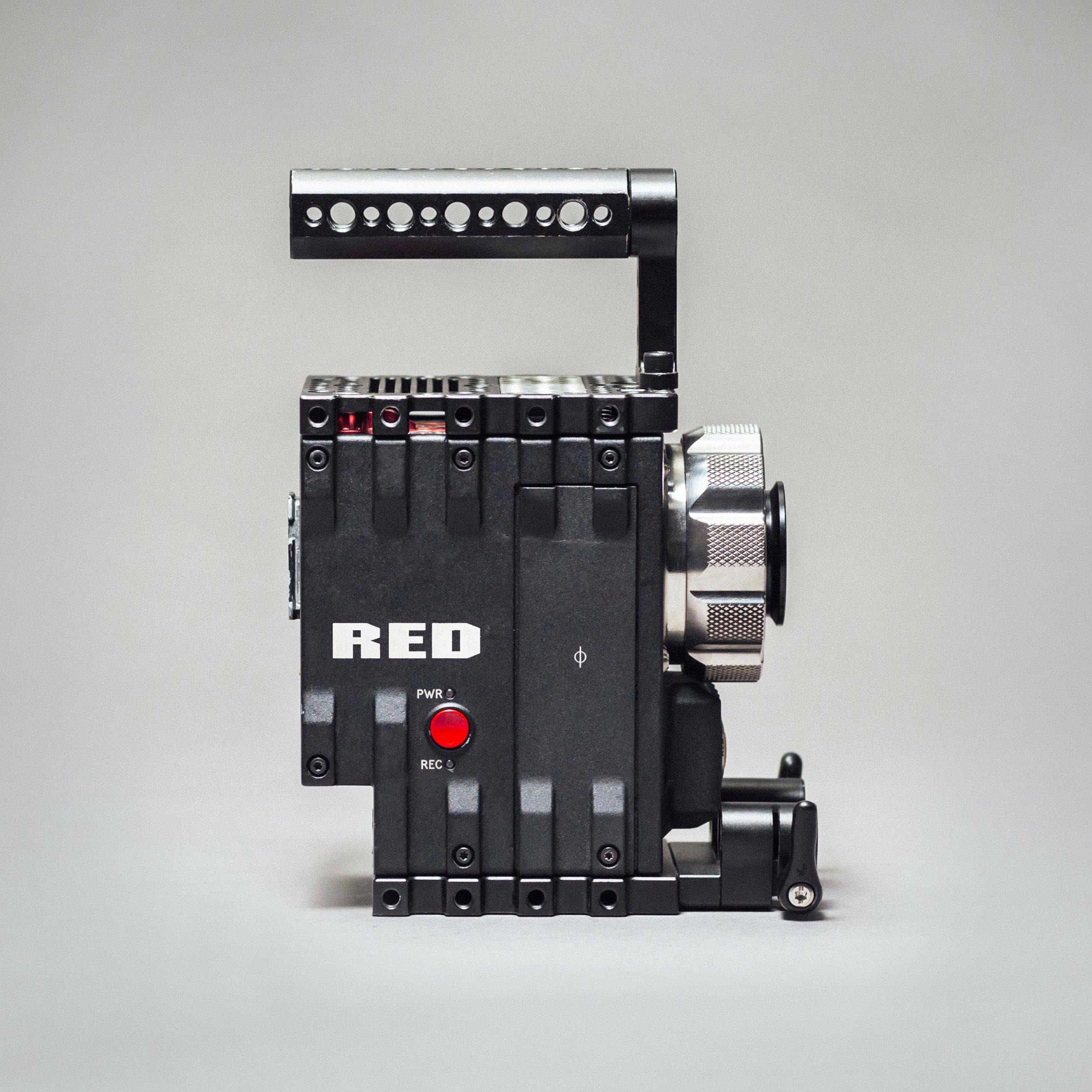 Red_Dragon_RProfile.jpg