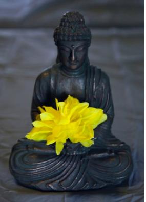 Ahimsa paramo dharma  : The highest dharma is ahimsa - nonviolence - universal love for all living creatures.