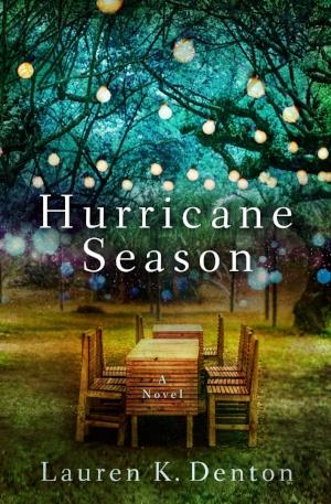 Hurricane Season_Cover.jpeg