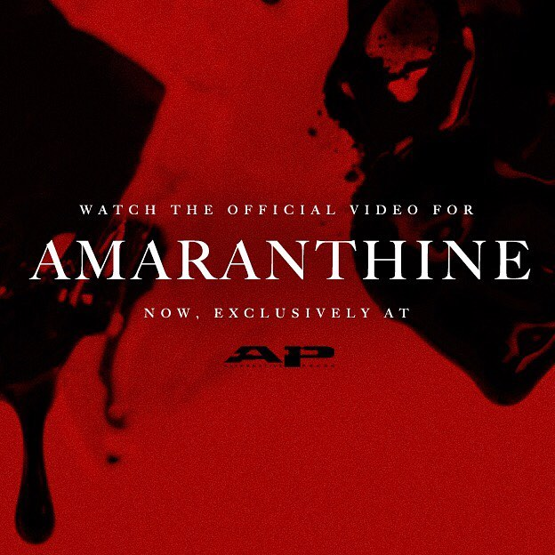 We're proud to present the official video for 'Amaranthine' from the debut album 'The Prestaliis', out August 11th. Watch it now at @altpress and join us in the fight against human trafficking. LINK IN BIO. #thorn #amaranthine #deathless