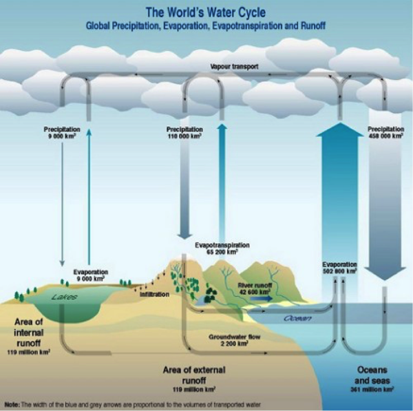 The Water Cycle - courtesy of the Science Education Research Center - Carleton College - Minnesota USA - http://serc.carleton.edu/1310