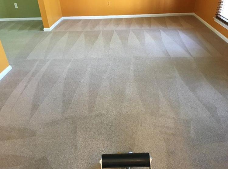 carpet cleaner 3.jpg