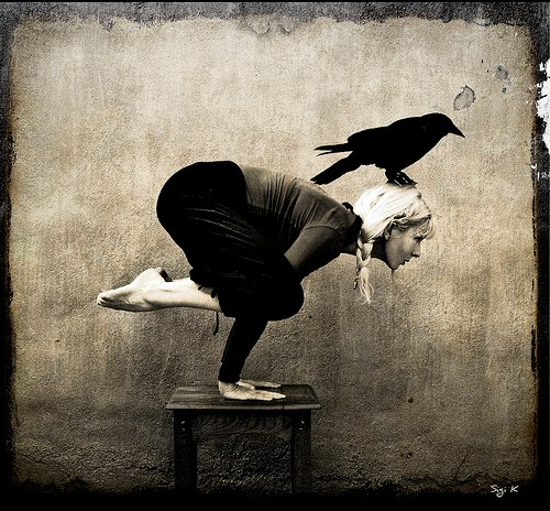yoga-crow.jpeg