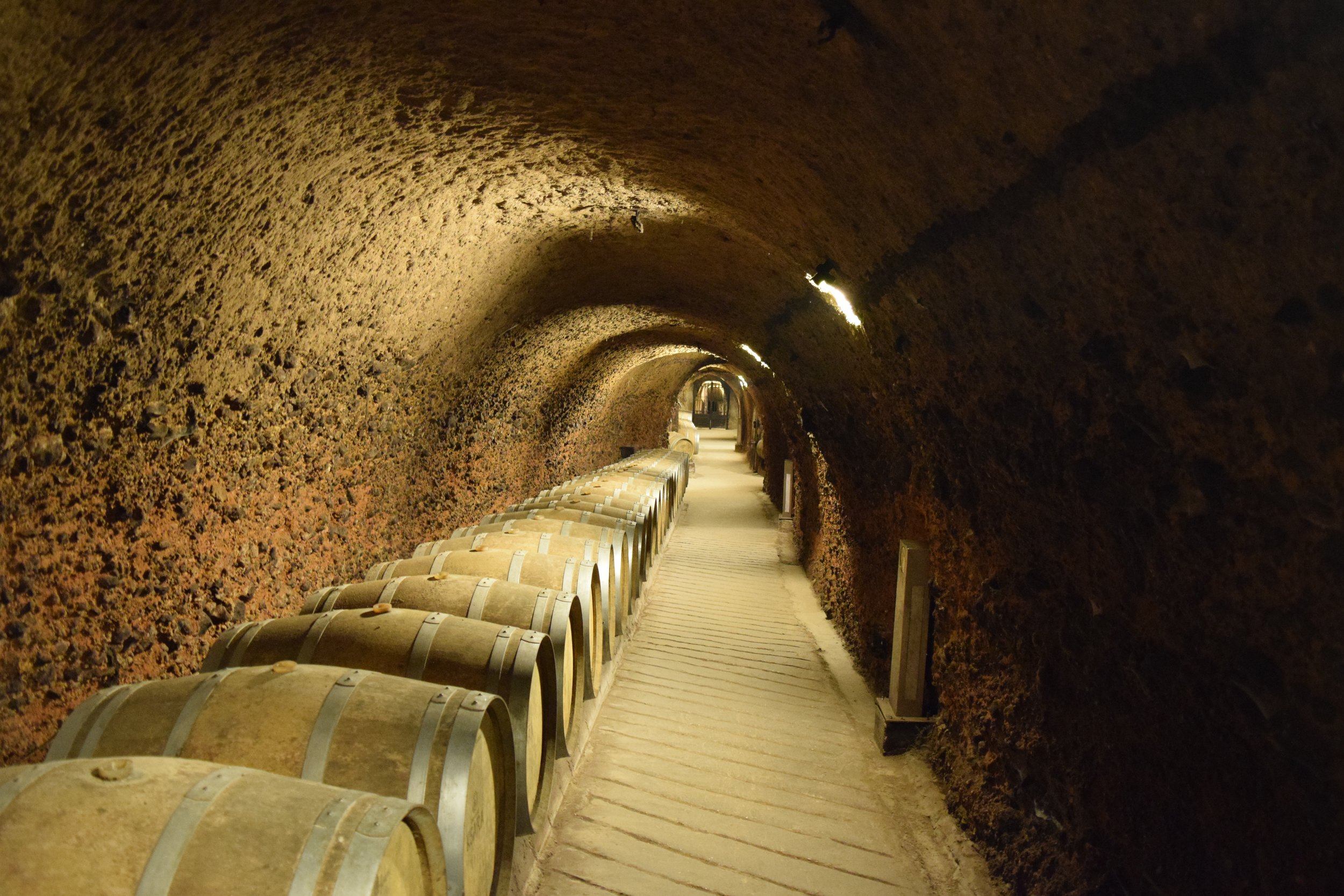 Caves of the winery