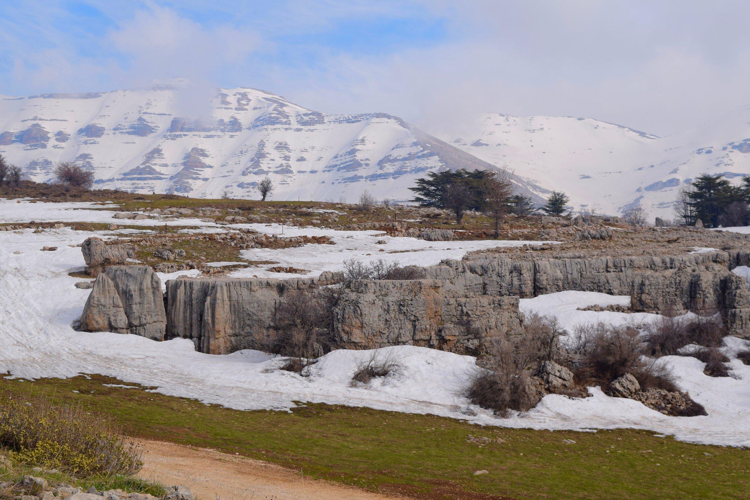 Tannourine  mountains