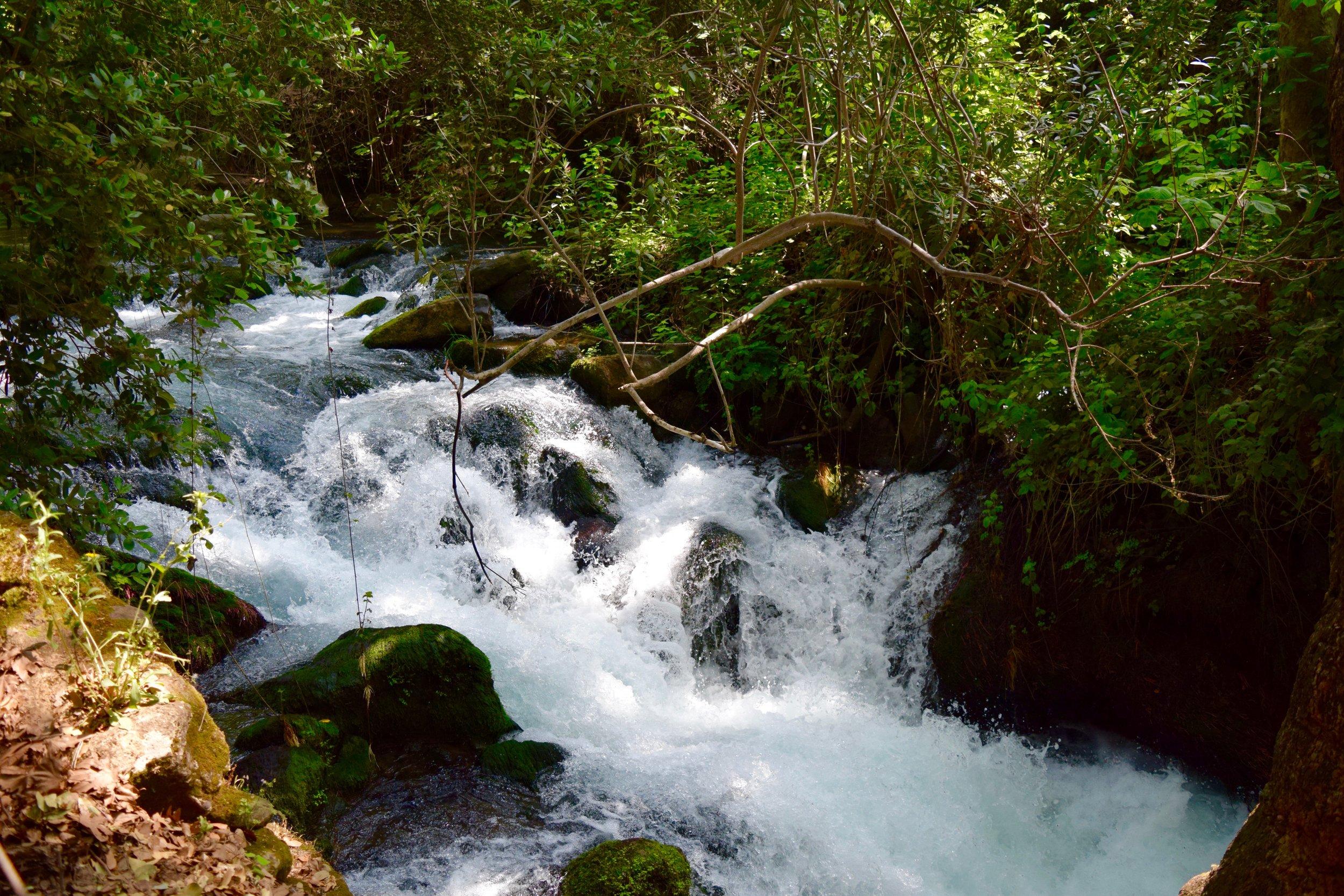 Hermon stream