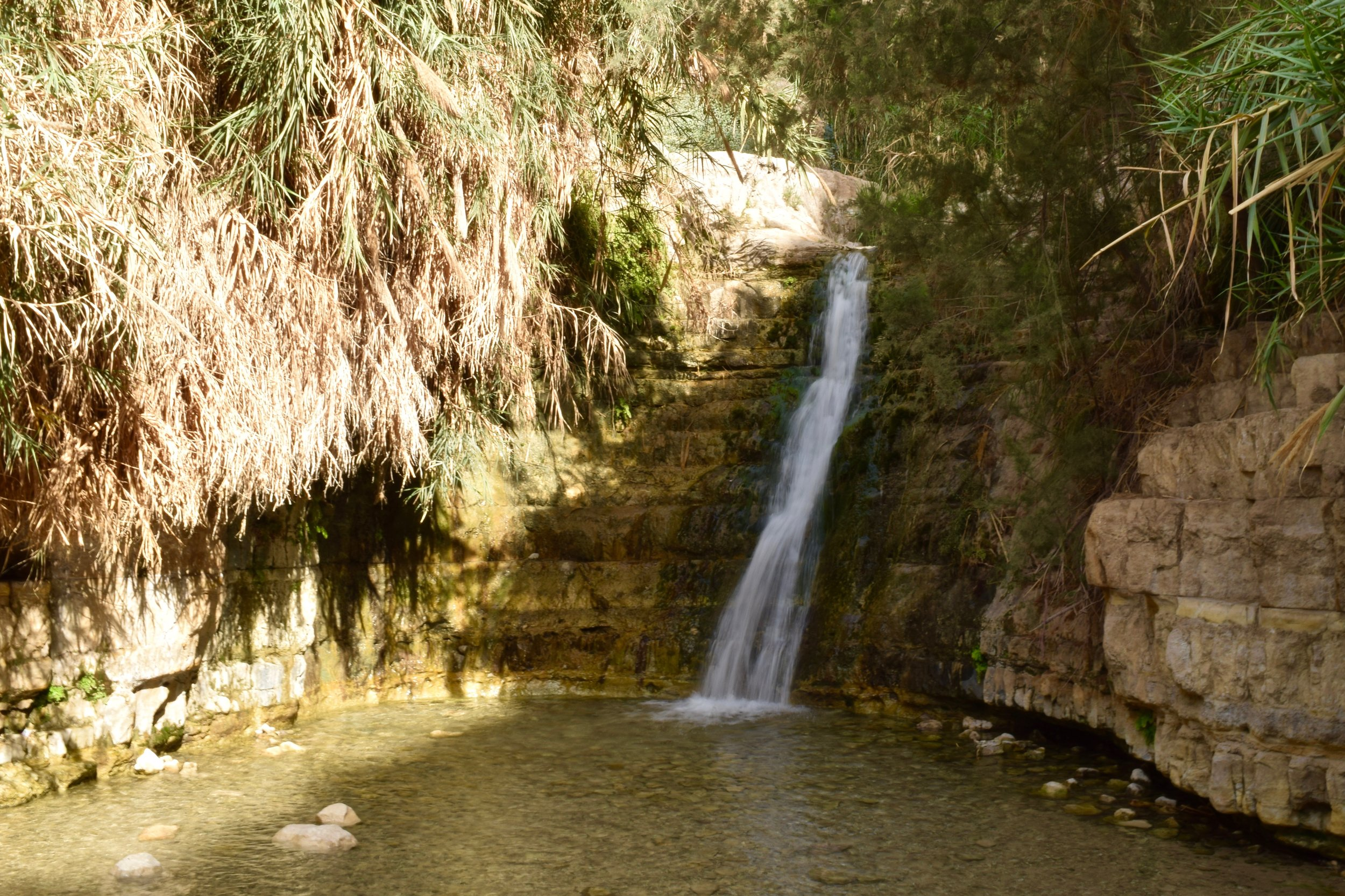 Waterfall in Ein Gedi